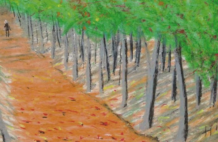 Artwork of path through woods