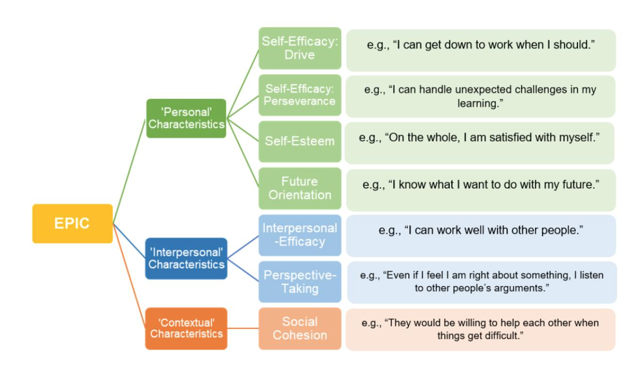 Figure 2. Amended seven component EPIC scale, with two self-efficacy sub-components: 'Drive' and 'Perseverence'.